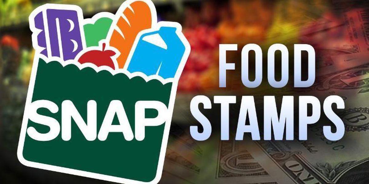 Snap Benefits Food Stamps